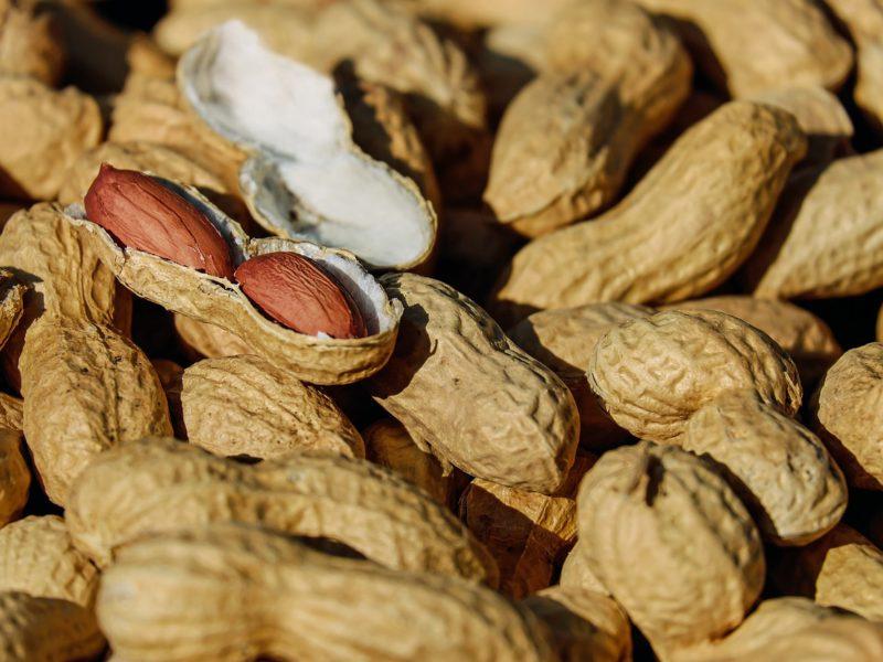 National Peanut Day!